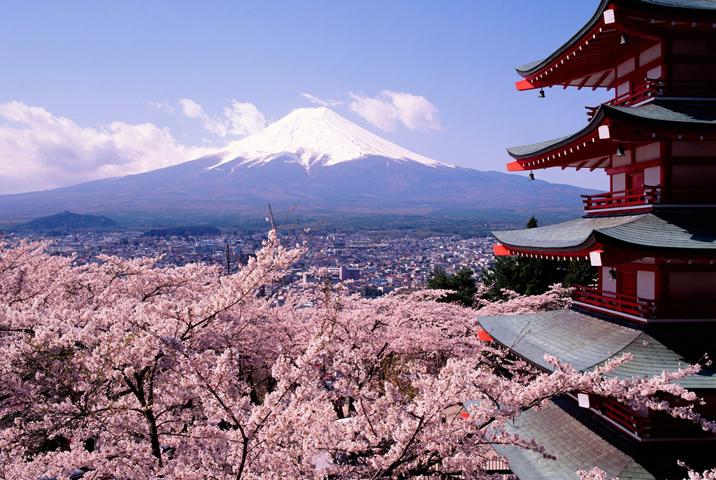 tokyo cerisiers mont fuji