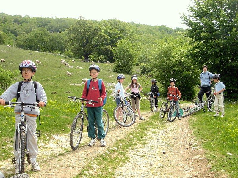 Ce sont des enfants qui font du vélo.